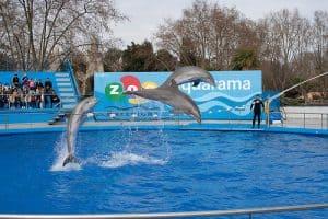 El zoológico de Barcelona